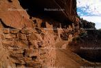 Cliff Palace, Dwellings, Cliff Dwellings, Cliff-hanging Architecture, CSOV01P09_19.1744