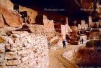 Cliff Palace, Dwellings, Cliff Dwellings, Cliff-hanging Architecture, CSOV01P10_02.1744
