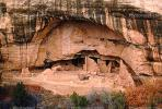 Oak Tree House, Cliff Dwellings, Cliff-hanging Architecture, CSOV01P10_19.1744