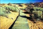 path, walkway, boardwalk, Coral Pink Sand Dunes State Park