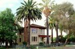 Palm Trees, House, Single Family Dwelling Unit, Home, lawn, residence, building, CTVV01P09_10.1746