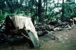 near the epicenter, Santa Cruz Mountains, Loma Prieta Earthquake (1989), 1980s, DAEV02P15_01