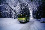 Fire Engine, snow, ice, cold, trees, forest, woodland, road, DAFV03P11_17