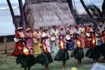 Dancers, Guitar Players, Women, grass skirts, lei, Ethnic Costume, natives, Hula, Hawaiian, March 1964, 1960s, EDAV03P10_07