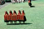 Hawaiian, Hula Girls, April 1975, 1970s, EDAV04P08_16