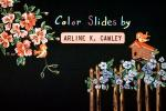 Color Slides by, Arline K. Cawley, bird, birdcage, flowers, cute, EIAV01P04_04