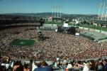 Oakland-Alameda County Coliseum, Audience, People, Crowds, Spectators, EMCV01P02_15