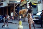 Girl and her Dog, Balancing on tin cans, Mumbai, ETBV01P05_14