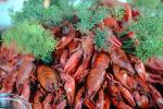 Crawdads, Crayfish, Dill