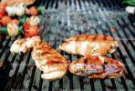 Barbeque, BBQ, Meat, Steak, Barbecue, Chicken BBQ, FDNV02P09_08