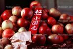 Apples, Jinan Market, China, Chinese, Asian, Asia, FGAV01P08_09