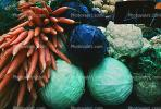 Carrot, Cabbage, Paris, France, FGEV01P08_10B.0946
