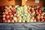 Apples, texture, background, FGNV02P11_02