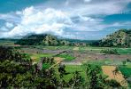 Rice Fields, Hills, Island of Bali, FMAV01P04_01.0838