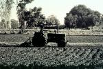 Tractor, Mechanized Farming, Plow, Plowing, Tilling, Farmer