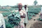 Woman with her Harvest, Smiles, FMJV01P04_10