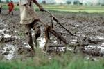 mud, dirt, soil, Plow, Plowing, man, male, farmer, manual labor, near Andrapa, Madagascar