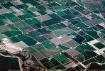 Fields, patchwork, checkerboard patterns, farmfields, FMNV06P13_01.0381