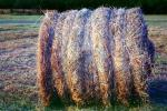 Rolled Hay Bale, FMNV07P07_17