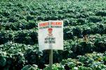 pesticides, near Castroville, Central California Coast, Herbicide, Insecticide, FMNV08P01_14