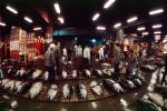 bringing in Tuna for auction at the Tsukiji Fish Market, Tokyo, FPOV01P04_19