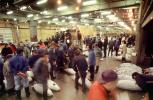 bringing in Tuna for auction at the Tsukiji Fish Market, Tokyo, FPOV01P11_19