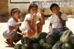 Boys, Girl, eating, Water Melons, Oaxaca, Mexico, funny, FPRV01P05_10C