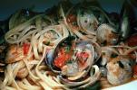 Vongole Pasta, clams, shellfish, seafood, Clams, Bivalve, FTCV01P08_01