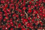 Cherries, texture, background