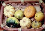 gourds, squash, texture, background