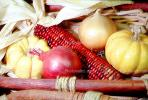 onion, Corn, texture, background, FTFV01P13_13