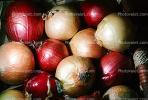 onion, texture, background