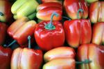 Bell Pepper, texture, background, FTFV02P01_09