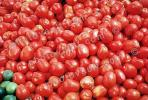 tomato, texture, background, FTFV02P08_01