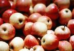 Apples, texture, background, FTFV02P08_02