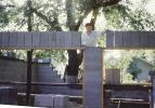 Man Building a House, 1950s, ICDV01P12_13