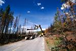 Logging Truck, Crane, clearing out burned trees from the great fire, ICSV01P07_07