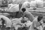Laundry, Child-Labor, ITWPCD3306_024