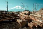 Lumber Mill, Logs, stacked, stacks, pile, Oshino, Japan, IWLV01P10_03.2172