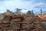 crane, Smoke, Air Pollution, soot, Pulp Mill, sawdust mounds, building, IWLV01P13_04.2172