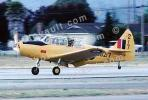 Fairchild primary trainer, PT-26 Cornell, MYFV01P01_10B