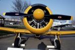 T-6G Texan, radial engine, propellers, spinner, head-on, MYFV08P09_17