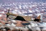 Curtiss P-40 Warhawk, MYFV15P04_04