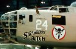 Nose Art, B-24 Liberator, noseart, Strawberry Bitch, MYFV19P05_15