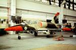 Aero Vodochody L-39 Albatros, high-performance jet trainer aircraft, Egyptian Air Force, Egypt