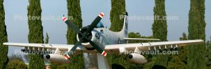35300, Douglas A-1 Skyraider at the Naval Air Station Lemoore, NAS, USN, United States Navy, USS Constellation, VA-25