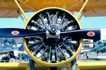 Radial Piston Engine, Round, Circular, Circle, Great Lakes 2T-1A single-engine two-seat Trainer, MYOV01P10_08
