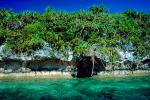 Tropical forest, Island, Coral Reef, Pacific Ocean, NDCV02P09_05.1276