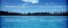 Tropical Pine Trees, Island, Coral Reef, Pacific Ocean, NDCV02P09_15