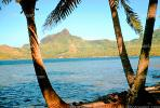 Mountain, bay, Bora Bora, NDPV01P01_03.1277